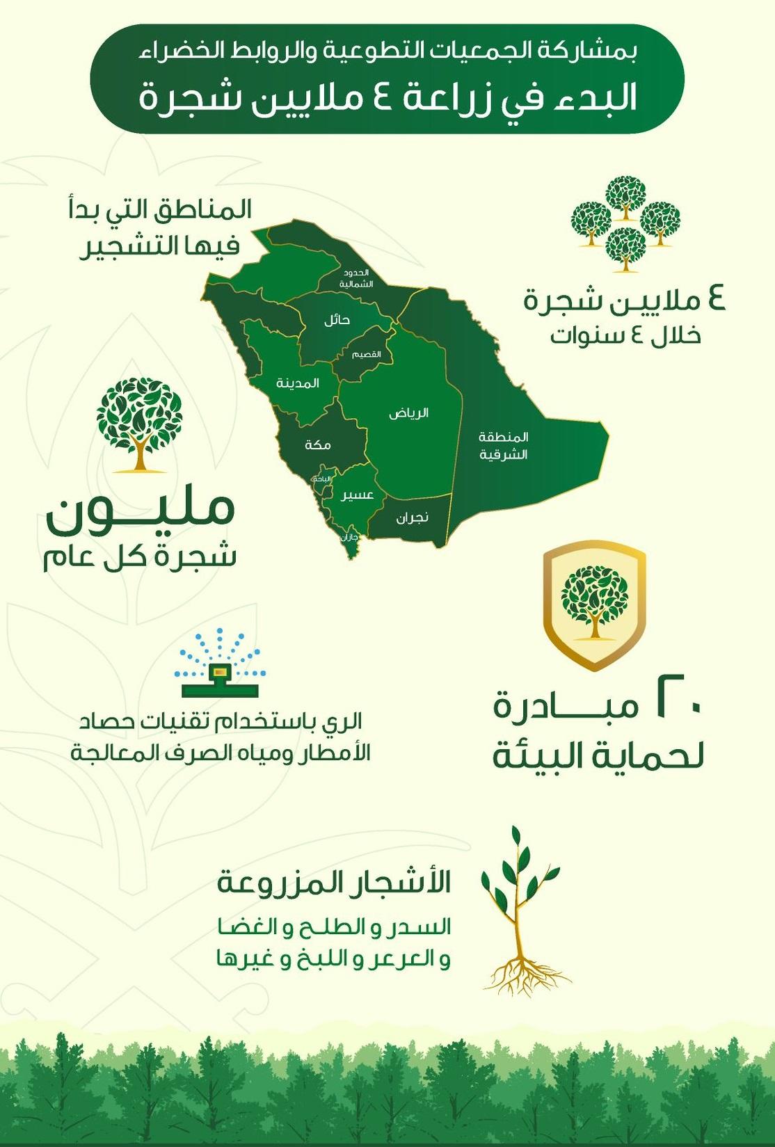 زراعة 4 ملايين شجرة